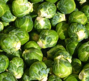 400pxbrussels_sprout_closeup_2